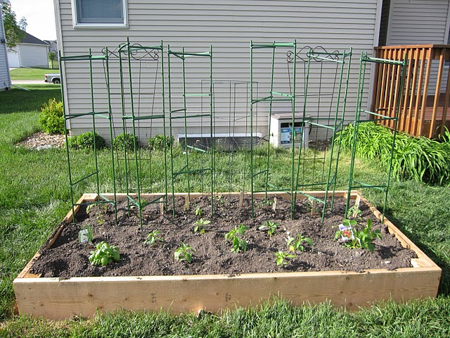 Photograph of a freshly planted raised bed garden.